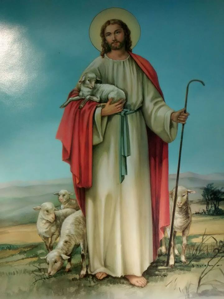 Ele e as ovelhas